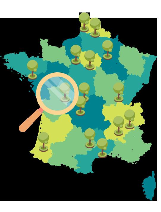 intervention-sur-tout-le-territoire-francais---aapa---expertise-végétale---analyse-sanitaire-arbre-2